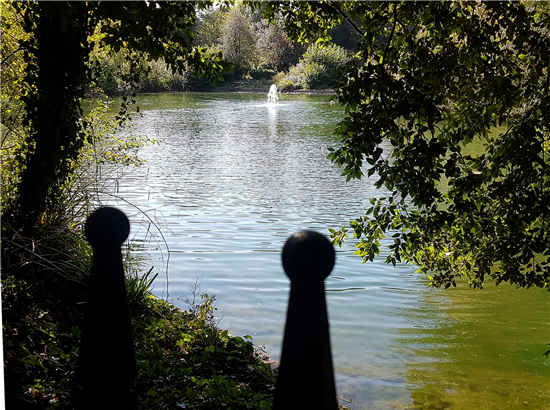 BH Pond